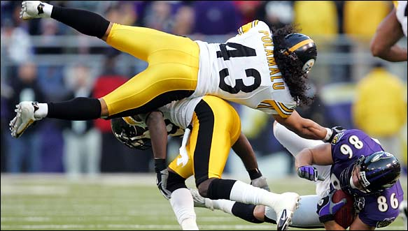 Polamalu_flying.jpg